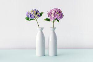 Flori de cameră frumoase